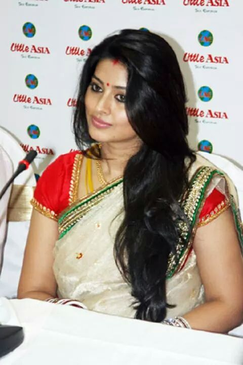 Actress Sneha in saree