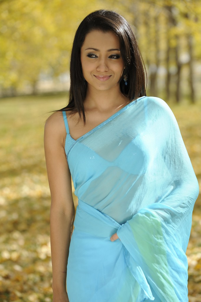 Trisha New Hot Saree Stills