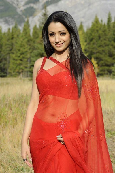 Trisha in see through saree