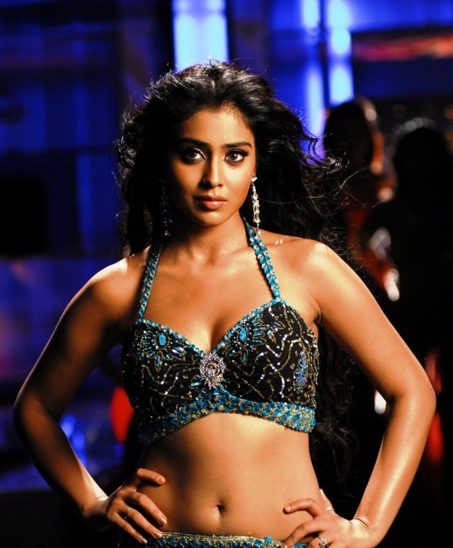 Shriya Saran navel hot bikini photo