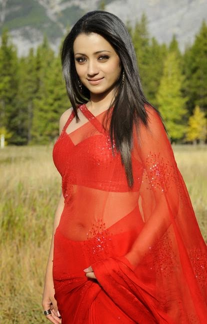 Trisha Hot Navel Images (6)