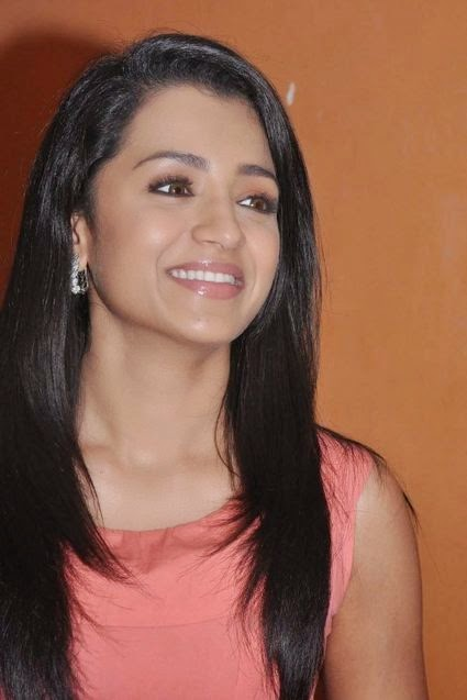 Trisha Hot Tamil Actress (4)