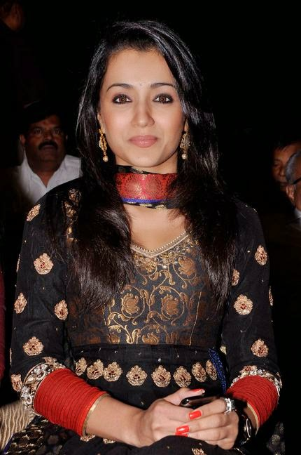 Trisha Hot Tamil Actress (8)
