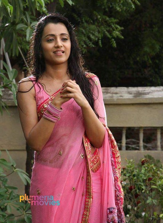 Trisha Hot Wet Stills Aranmanai 2(10)