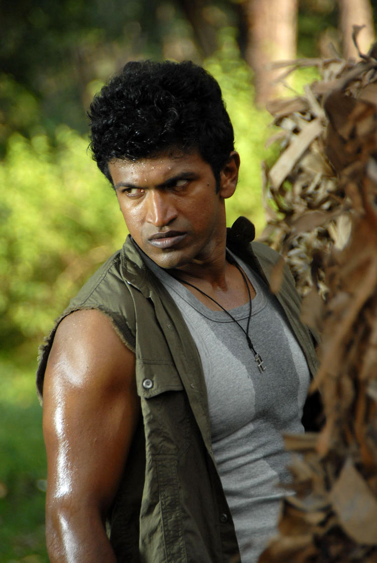 Puneeth Rajkumar Plumeria Movies