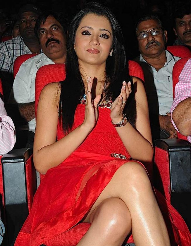 Trisha Krishnan hot cleavage photo